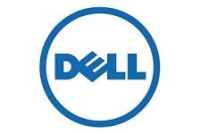 Dell 225 x 150
